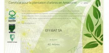32913_AQV - Certificat 40 arbres-page-001