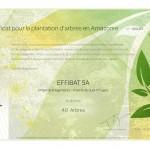 certificats arbres - Pregny-page-001